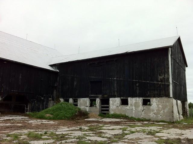 Century barn ontario