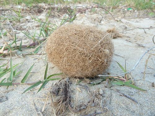 una bola