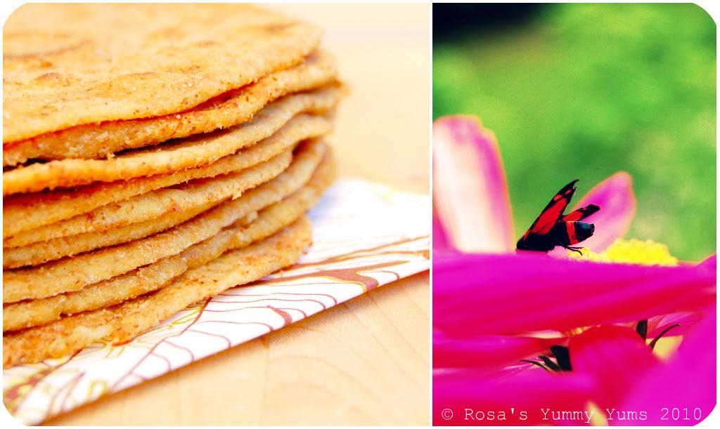 Chapatis Picnik collage 2 bis