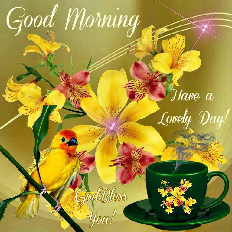 Good Morning God Bless And Have A Lovely Day Pictures Photos And