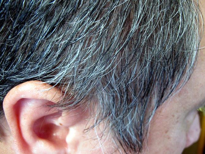 Ecco perché i capelli diventano bianchi Corriere della Sera - perche i capelli  diventano bianchi 8ced976e6538