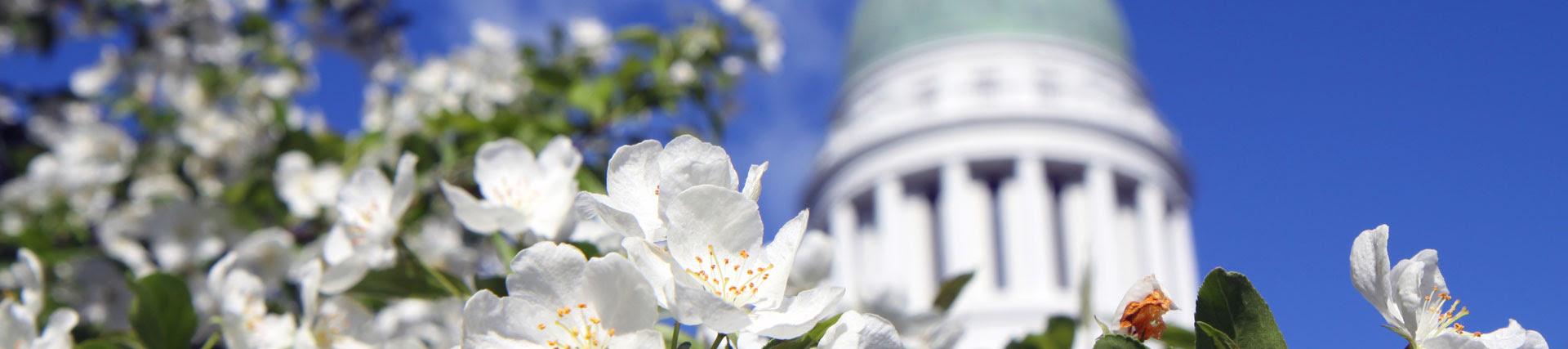 http://legislature.maine.gov/house/house/Content/public/images/slider/flexslider/1052.jpg