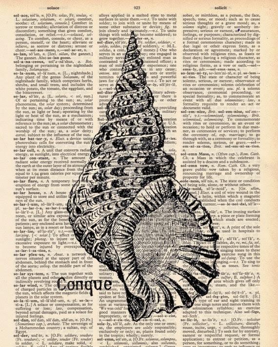 Vintage Dictionary Conque Shell Print - Shell print plus FREE 5x7 monogram