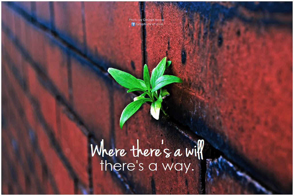 Where Theres A Will Theres A Way E Motivationnet