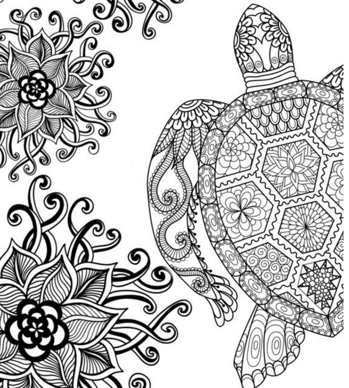 Adult Coloring Pages Turtle at GetColorings.com   Free ...