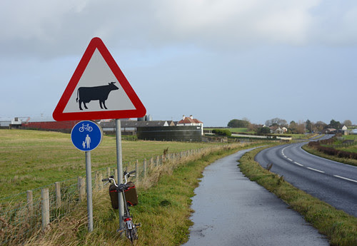 Rural Cycling Highway, Coleraine N Ireland
