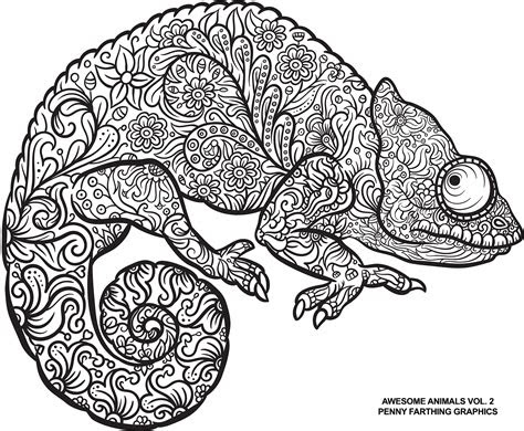 lizard  awesome animals vol  coloring books
