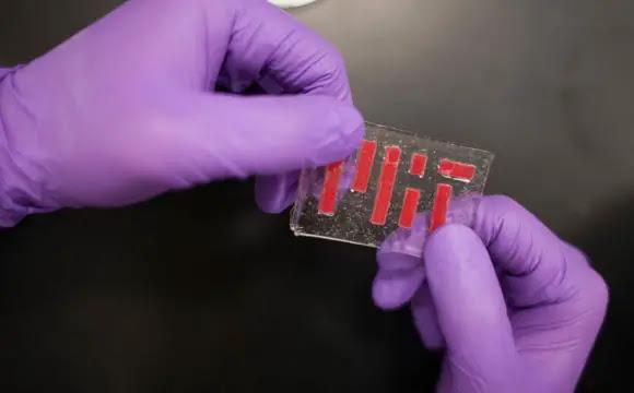 MIT Develops Tough Hydrogel Hybrid