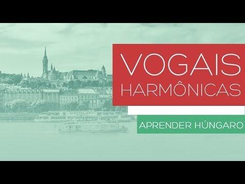 Estudar Húngaro - Vogais Harmônicas, dicas para aprender fácil!
