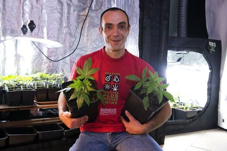 Dominique Broc  Porte Parole National Du Projet  Cannabis Social Clubs   Pose Devant Sa Production De Cannabis    Son Domicile  Le 4 Janvier 2013    Esvres  Pr  S De Tours