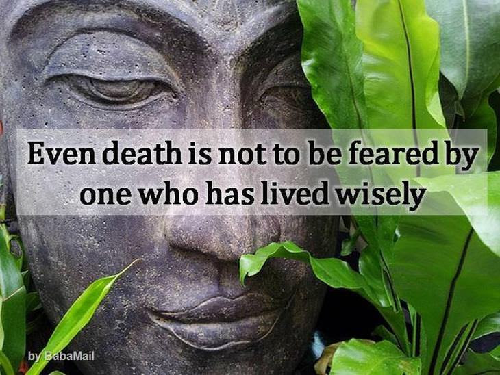 Ancient Buddha Quotes To Think About Spirituality Babamail
