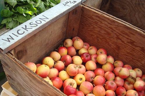 Wickson Apples