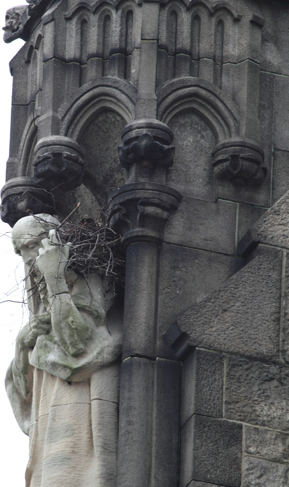 Cathedral Nesting!