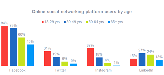 Social media network demographics