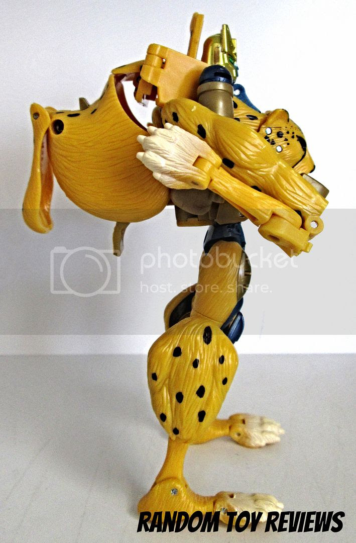 Henkei! Cheetor photo Rhinox033_zpse90ad80e.jpg