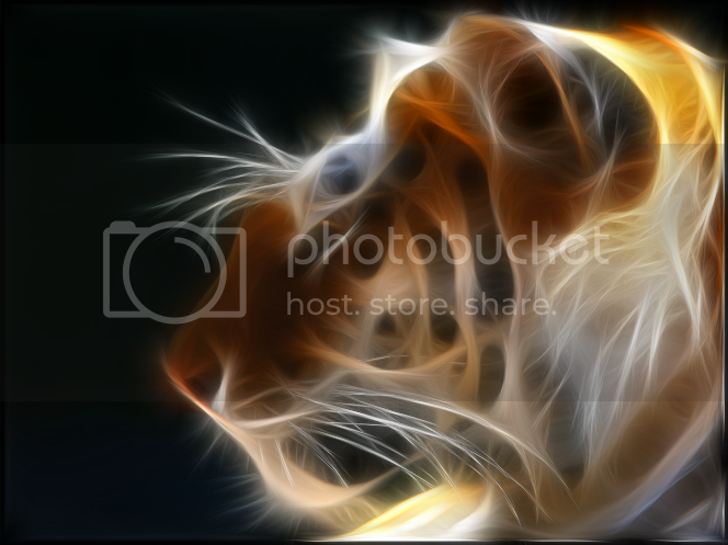 filtro fractalius photoshop
