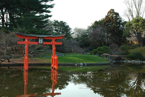 Pond and Torii