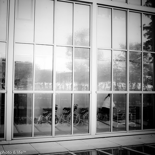 22101154 by Jean-Fabien - photo & life™