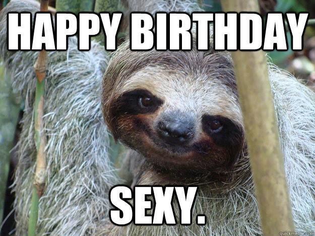 Happy Birthday Sexy Pickup Line Sloth Quickmeme