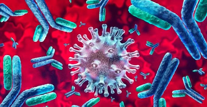 Fiocruz identifica 'mutações preocupantes' do novo coronavírus no MA