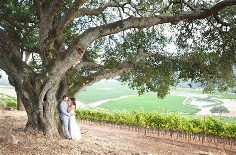 How much does a Wine Country Wedding cost?   Orchard