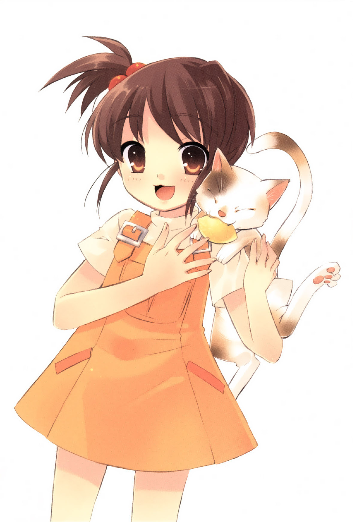 Brown-Haired Characters - Anime Photo (27597969) - Fanpop