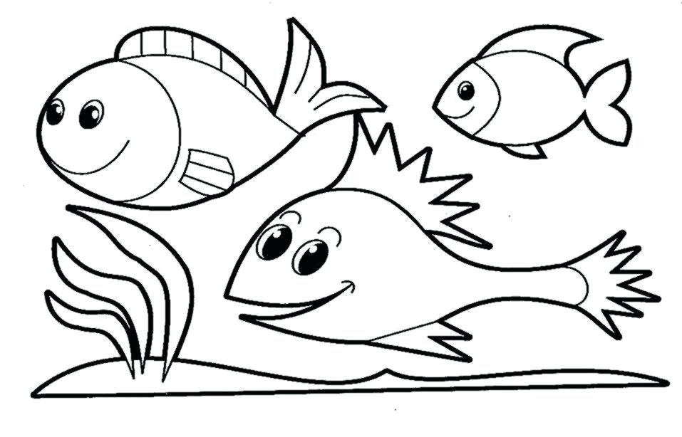 5th Grade Coloring Pages | Free download on ClipArtMag