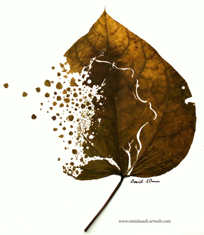 feuilles à la main coupée par: Omid Asadi