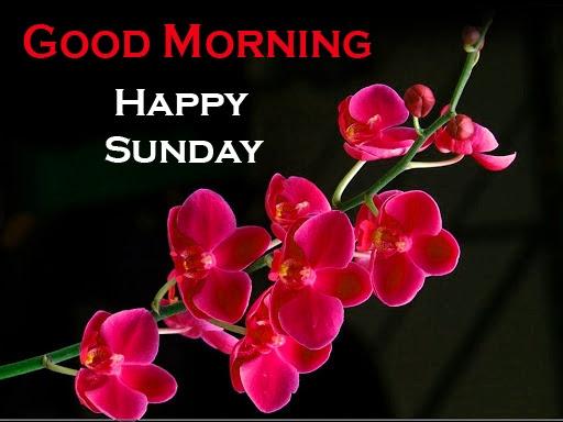 Sunday Good Morning Images 14 1