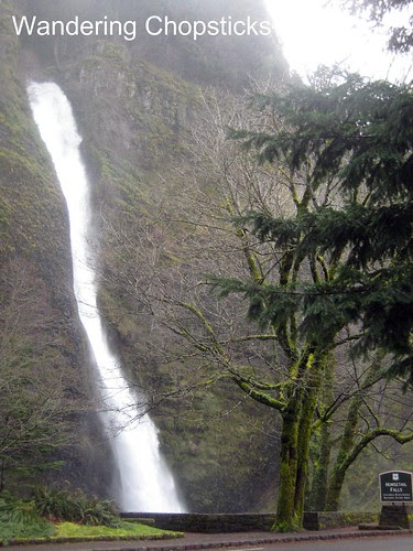 3 Horsetail Falls (Winter) - Columbia River Gorge - Oregon 1