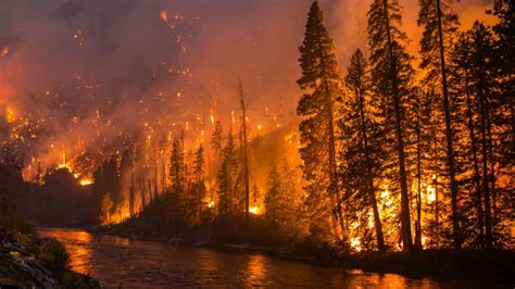 wildfires  polluting rivers  threatening water