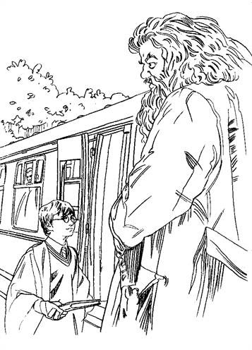 kidsnfun  24 coloring pages of harry potter and the