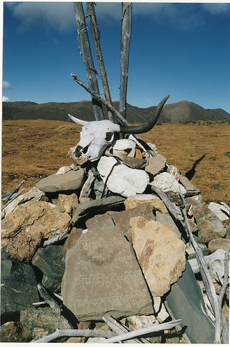 Skull on cairn, Yulongxi, near Kangding
