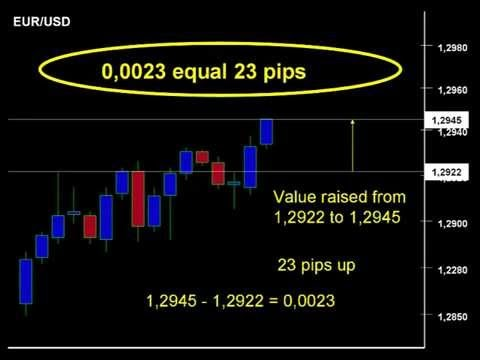 Meaning of margin level in forex