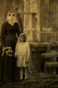 cadaverfrontcover-33 by Radish King.