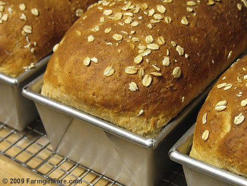 Oatmeal Toasting Bread in loaf pans