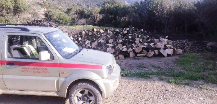 Αιτωλοακαρνανία: Στοιχεία  – «φωτιά» για τη λαθροϋλοτομία!