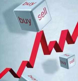 The BSE Midcap Index has plunged a little over 14 per cent so far in the year 2013, while some midcap stocks have eroded investors' wealth by more than 50 per cent.
