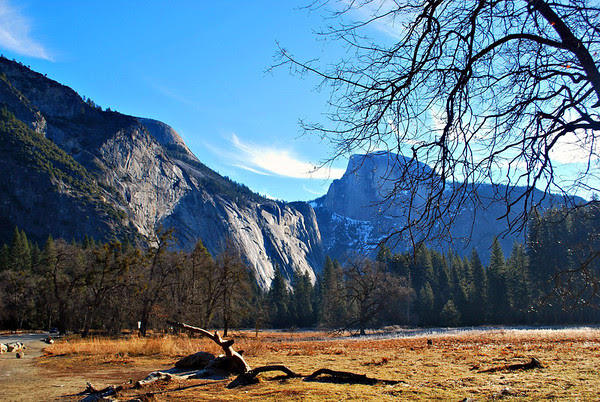 Half Dome from the floor of Yosemite Valley