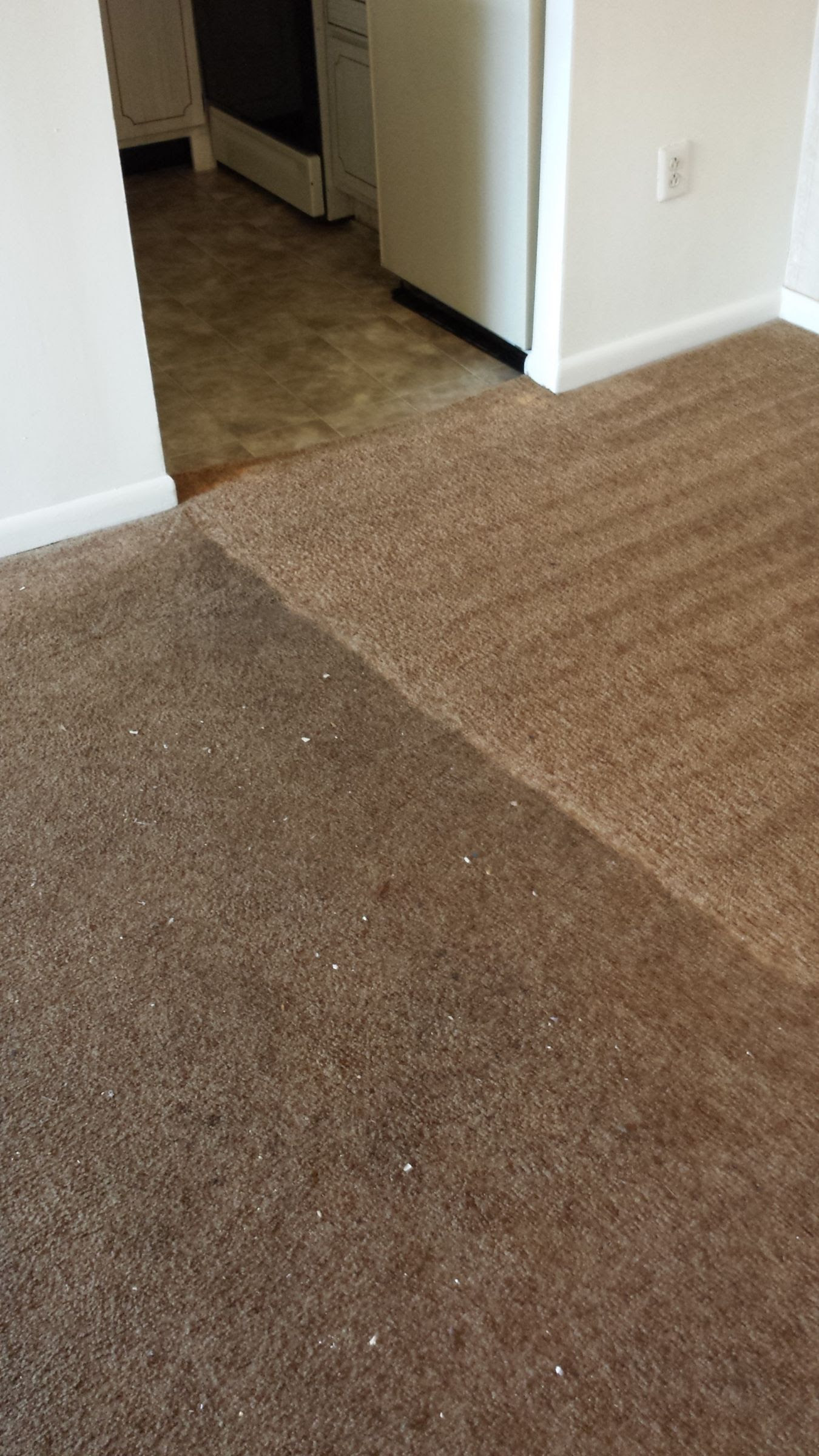 We Offer The Best Carpet Cleaner Services In Cherry Hill Nj