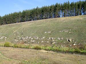 выходы скал на реке Полосня у дер. Лишняги
