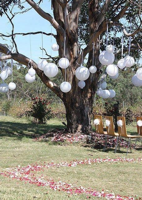 Outdoor tree decorations   Wedding & Event ideas