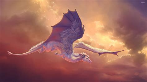 baby dragon wallpapers top  baby dragon backgrounds