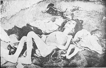http://www.gwu.edu/~erpapers/humanrights/timeline/armenian-genocide.jpg