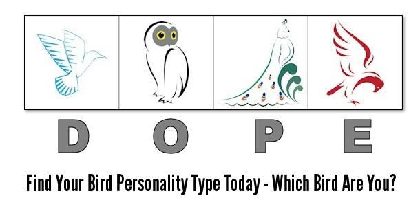 "Jom Test Jenis Personality Burung - Teka-Teki & ""Trivia"