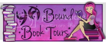 http://yaboundbooktours.blogspot.com/2013/11/book-blitz-sign-up-most-wonderful-time.html