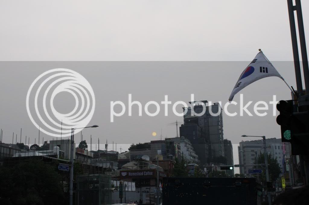 photo IMG_2312.jpg
