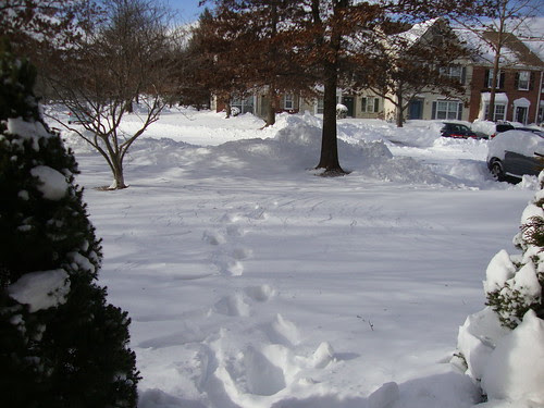 12/27/10:  after the Boxing Day snow
