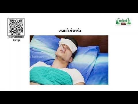11th Nursing General உடல் நல நிர்ணயம் மற்றும் மதிப்பீடு அலகு 5 Kalvi TV
