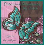 Precious Memories by Julie